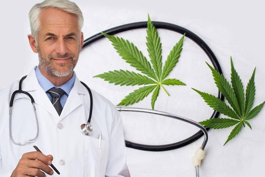 Konopie w medycynie - wykłady lekarzy